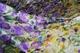 Атлас шелковый набивной(купон)