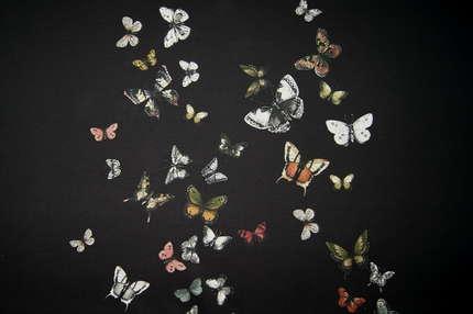 """Трикотаж футер купон """"Бабочки"""""""